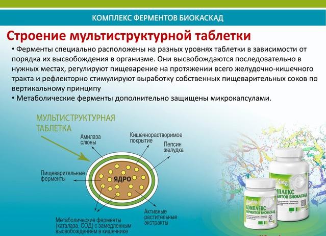 Сравнение пищеварительных ферментных препаратов